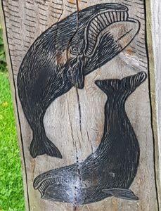 Whale sculpture, Pannett Park, Whitby